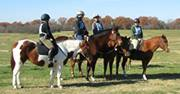 Hillside riders at the 2012 SEFA Trail Challenge.