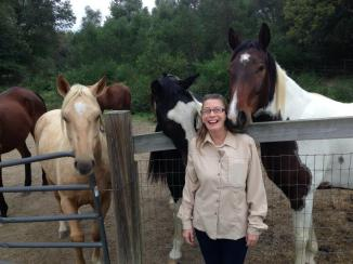Hanging out with the geldings: Geolo, Perry and Fiero